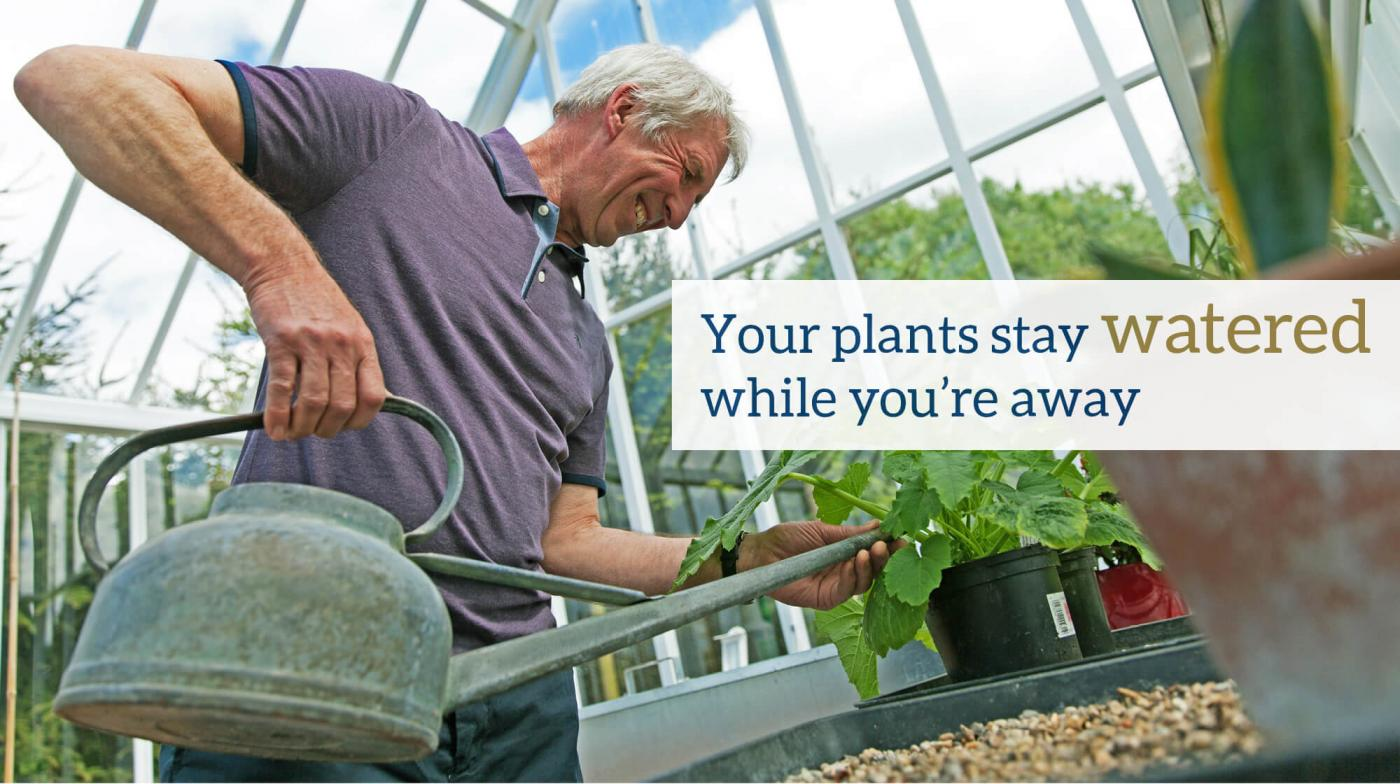 Your plants stay watered while you're away