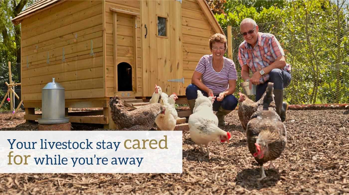 Your livestock stay cared for while you're away