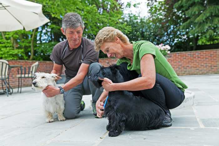 Caring home sitters for houses and pet sitting services