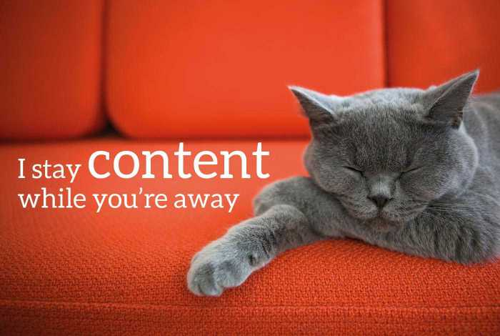 "Cat asleep on sofa with the words ""I stay content while you're away"""