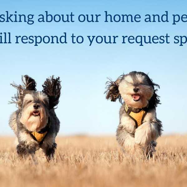 Nfu Mutual Dog Insurance Reviews